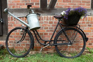 Antique bicycle with a watering can and potted flowers against a weathered brick wall.